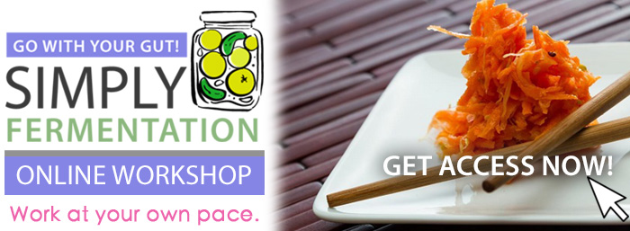 Simply Fermentation Online Workshop for Practitioners Sign Up